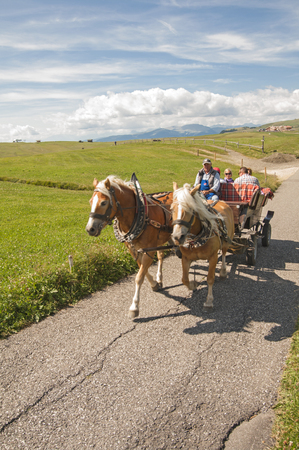 carriage on alpe di siusi,sud tyrol,Italy Editorial