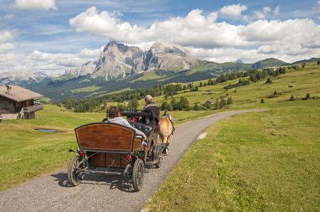 carriage on alpe di siusi,sud tyrol,Italy Stock Photo
