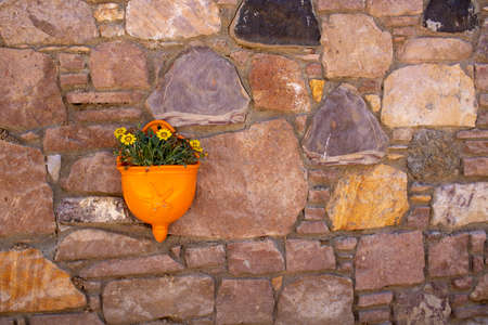 Flower pots hanging on the wall. Orange