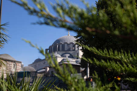 Close shot of Suleymaniye Mosque. The tree was pulled through the branches. Stock fotó