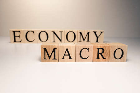 Business concept. Macro, economy, risk words are written with wooden cubes. The studio was shot under spot light.