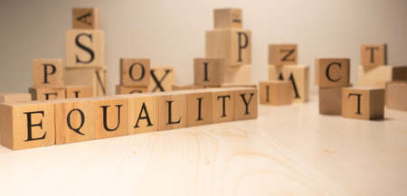 The word equality is from wooden cubes. Terms of economy state government. Background made of wooden letters.