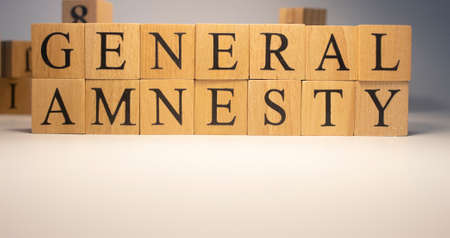 The word , general amnesty, was created with wooden cubes.