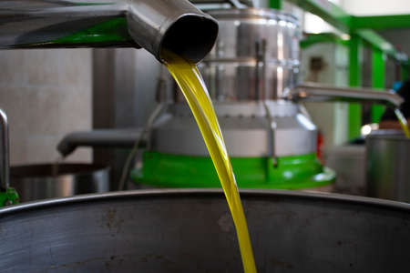 Extraction of oil from olives in a modern farm, cold-press factory after the olive harvesting, fresh oil flowing in the bin Banco de Imagens