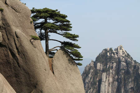 Anhui Huangshan mountain Scenery
