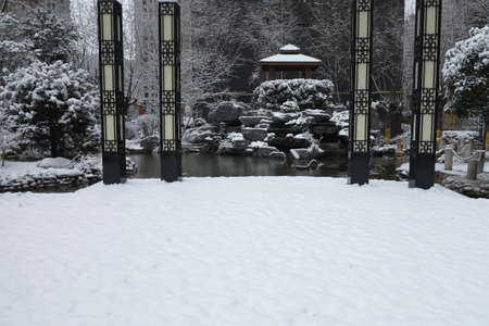 The garden and the snow 版權商用圖片