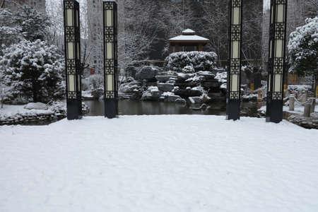 The garden and the snow 版權商用圖片