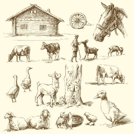 bauernhof: Hof - handgezeichnete Sammlung