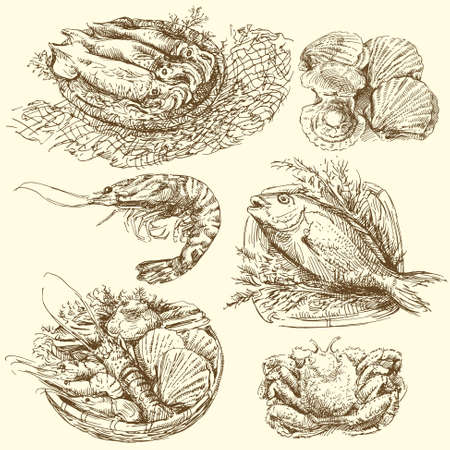sea food, fish collection Vector
