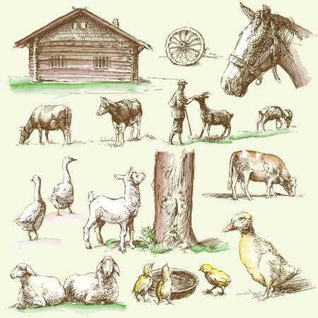 melker: boerderij - hand getekend collectie