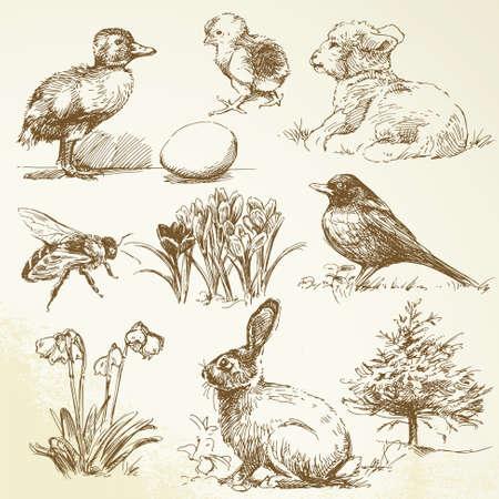 pasen schaap: voorjaarscollectie Stock Illustratie