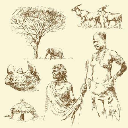 acacia: africa