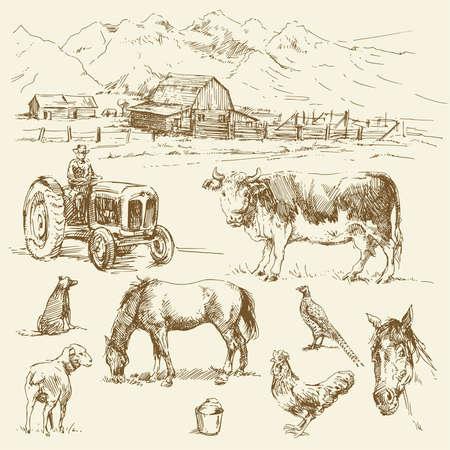 cartoon tractor: farm - hand drawn collection