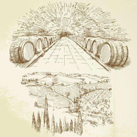 bodega, viñedos - conjunto dibujado a mano