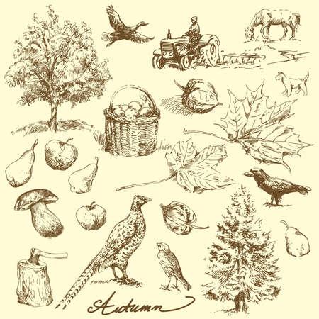 arbol de manzanas: otoño-dibujado a mano configurar
