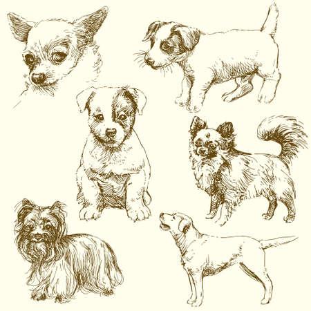 dog Stock Vector - 13571749