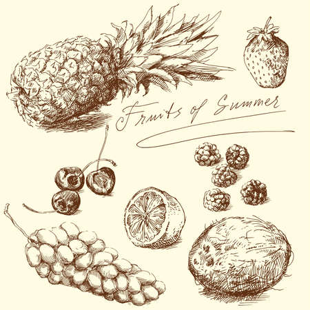 with coconut: fruit - hand drawn collection, vector illustration