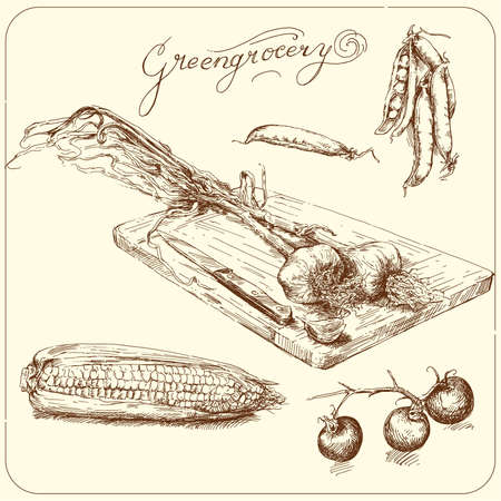 greengrocery - hand drawn vegetable  Vector