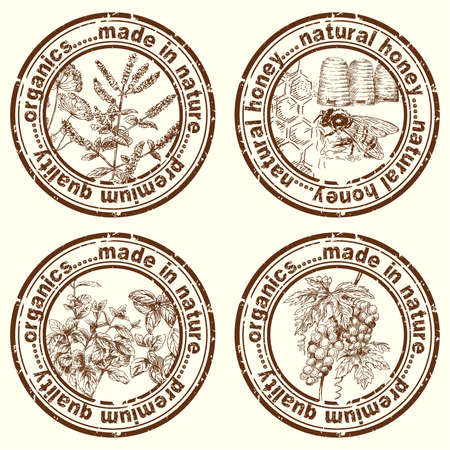 herbal stamps  Vector