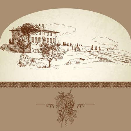 hand getekende wijngaard Vector Illustratie