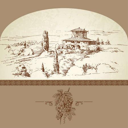 hand drawn vineyard Stock Vector - 13935865