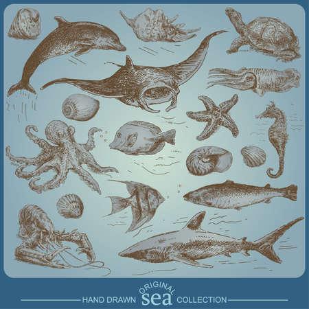 octopus: zee collectie - handgemaakte tekening Stock Illustratie