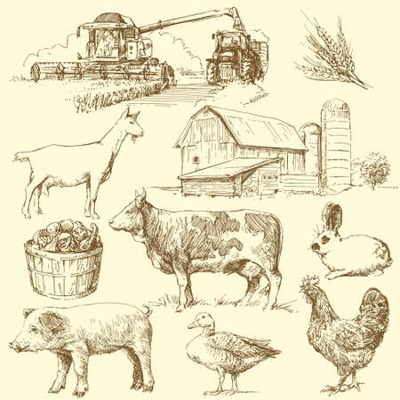 cosechadora: los animales de granja