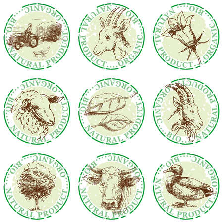 natural stamps-hand drawn labels  Vector