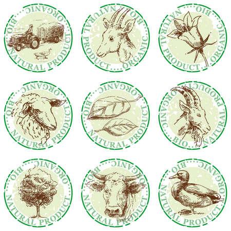 cabras: naturales sellos mano las etiquetas extra�das Vectores