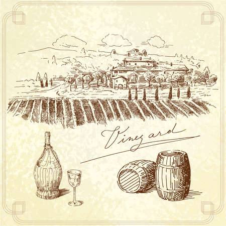 wine vineyards: vineyard-original hand drawn collection