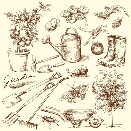 agricultural equipment: gardening tools  Illustration