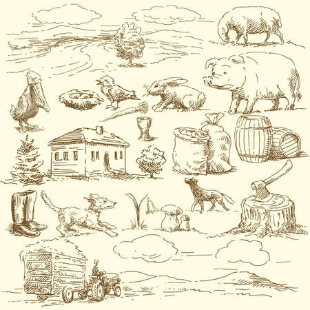 farm animal cartoon: original hand drawn farm collection