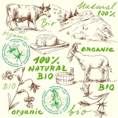 queso de cabra: dibujado mano original conjunto bio