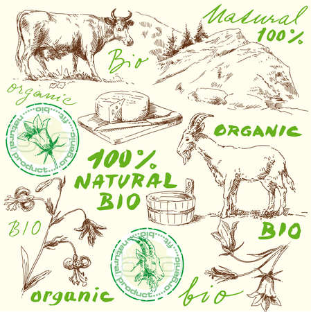 goat cheese: original hand drawn bio set