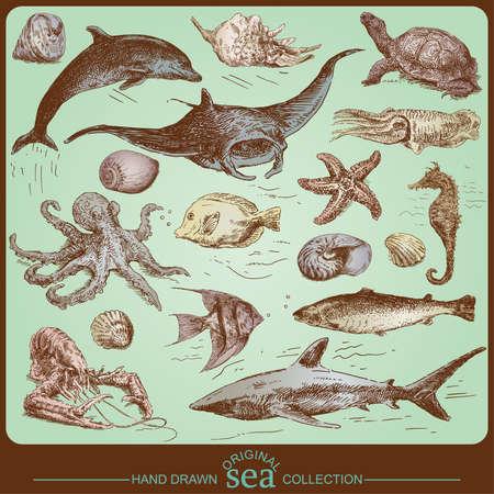sea collection - original hand drawn set  Vector