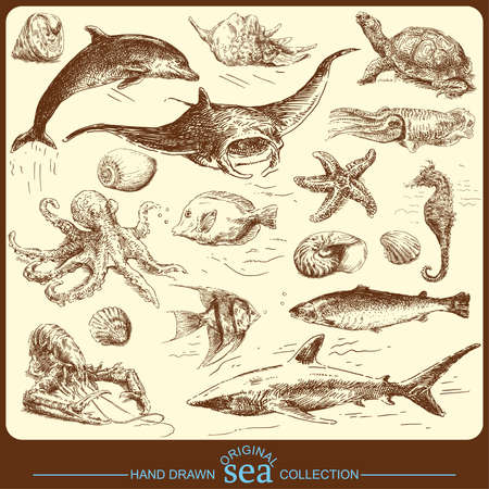 sea collection - original hand drawn set  Vector