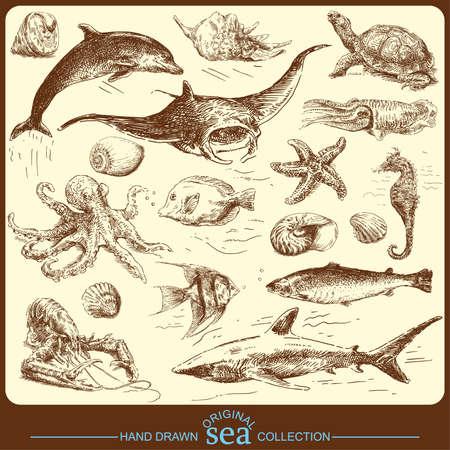 turtles: sea collection - original hand drawn set
