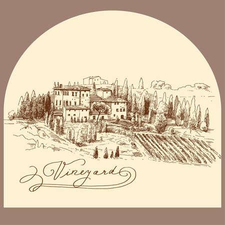 hand drawn vineyard