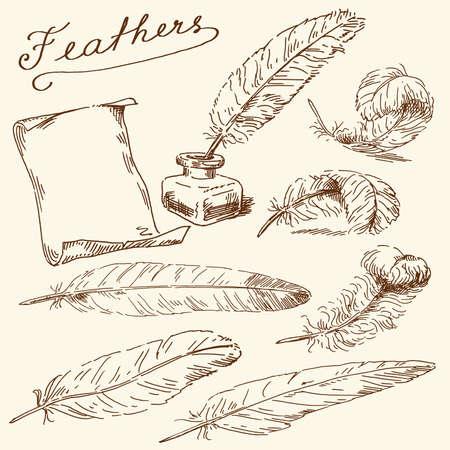 effortless: dibujados a mano plumas Vectores