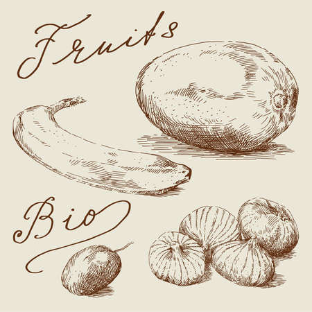 mangoes: hand drawn fruits
