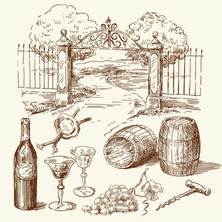 wine vineyards: hand drawn wine collection  Illustration