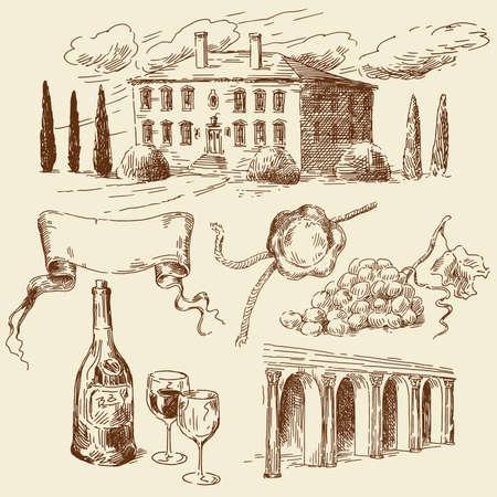 hand drawn wine collection  Illustration