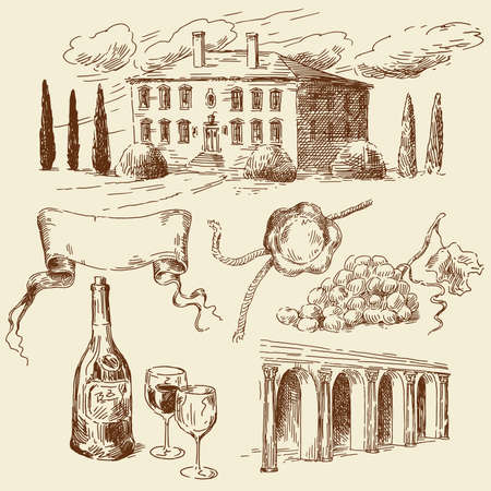 food and wine: hand drawn wine collection  Illustration