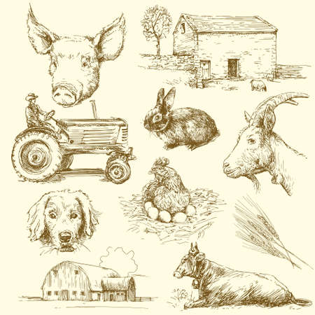 milker: farm animals - hand drawn collection Illustration