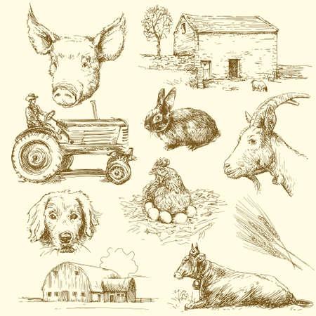 granero: los animales de granja - recogida de dibujado a mano Vectores
