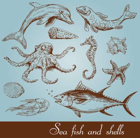 octopus: mar, peces conjunto