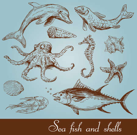sea fish set  Vector