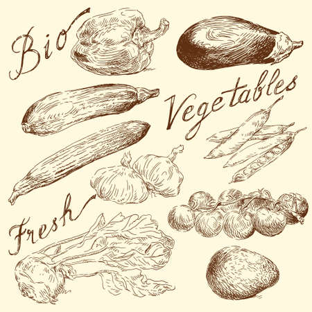 old kitchen: vegetables doodles