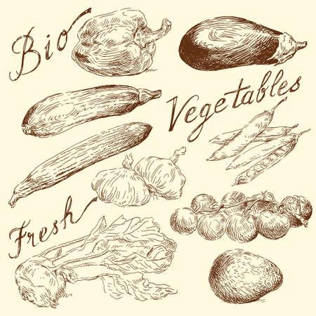 kuchnia: warzywa doodles