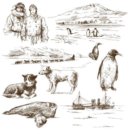 south pole: polar explorer - hand drawn collection Illustration